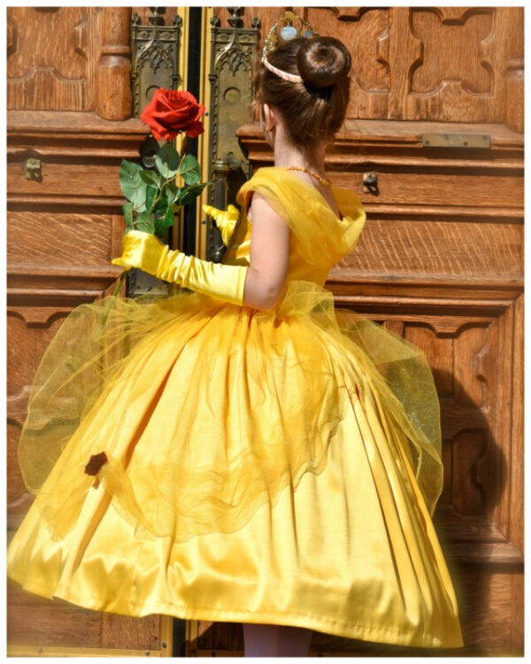 Princess Dress PDF Sewing Pattern, princess costume, Belle costume, Frocks & Frolics